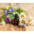 Essential Oils (1)