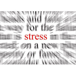 The Stress Responce